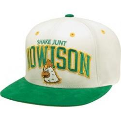 Boné Shake Junt Nowison - Green/Cream