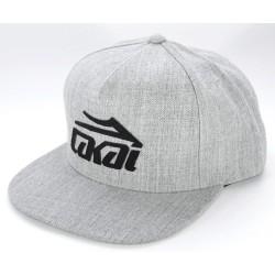 Boné Lakai ETCH Snapback - Grey