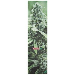 Lixa Mob Grip High Times Magazine Weed
