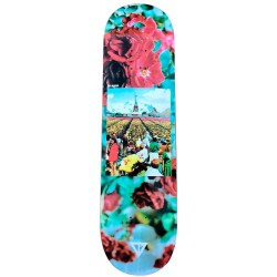 "Deck Dilabor "" The Four Elements"" Earth - 8.375''"