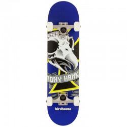 Skate Completo Birdhouse Oversized Skull - 7.375'' (Mini)