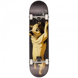 Skate Completo Darkstar Bulldog Black - 7.75''